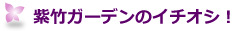 紫竹ガーデンのいちおし